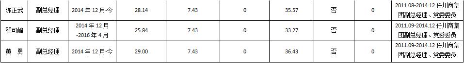 企业负责人2015年度薪酬情况(2).png